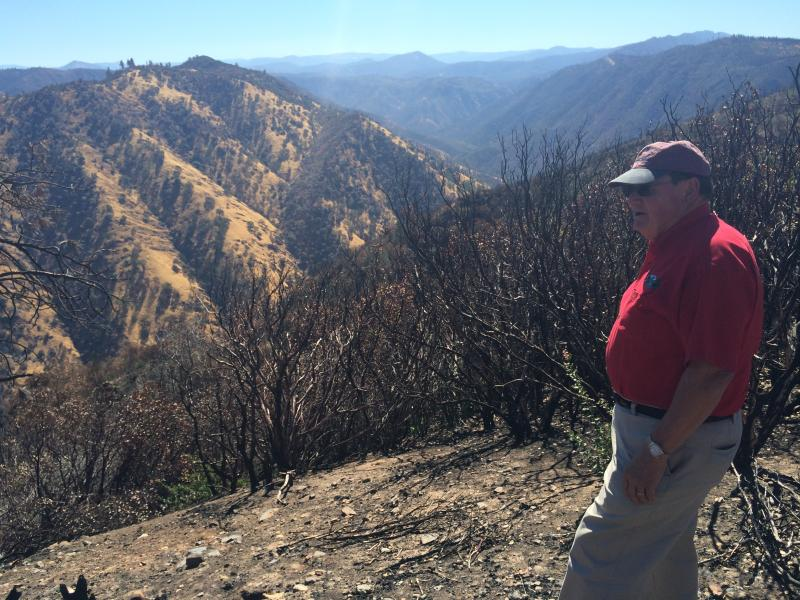Randy Hanvelt stands on the edge of the Rim Fire footprint overlooking the Clavey River Canyon.