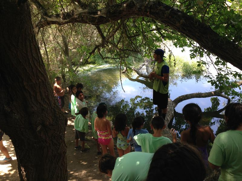 Underneath a hollowed out tree campers learn about the ecosystem along the San Joaquin River.
