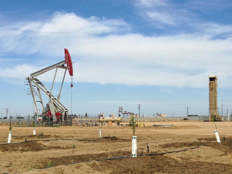 In Kern County the petroleum industry and the world of farming are becoming more and more linked.