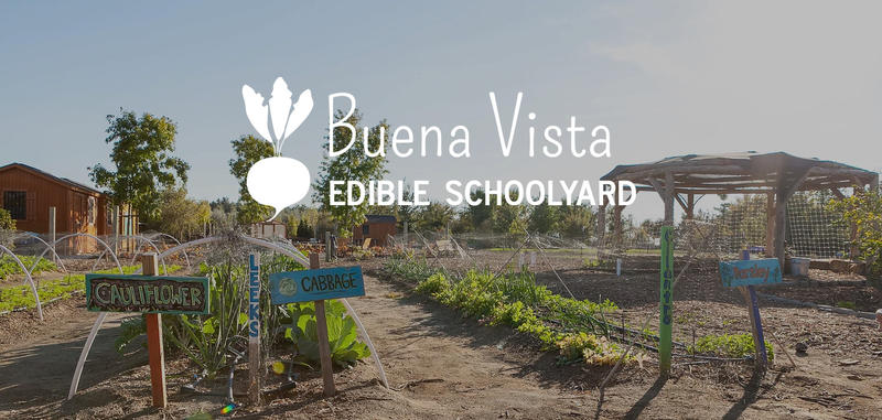 The Buena Vista Edible Schoolyard is hosting a plant sale April 1