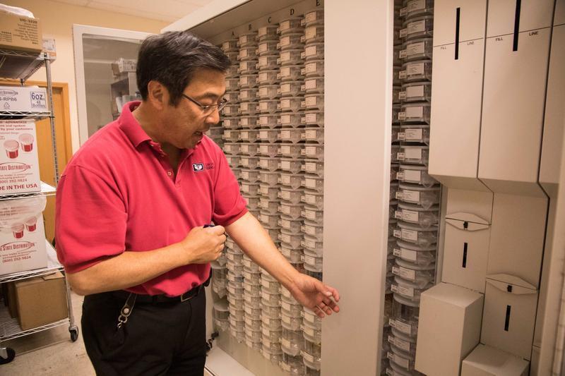 Brian Komoto, pharmacist and CEO of Komoto Healthcare, runs Komoto Pharmacy in downtown Delano.
