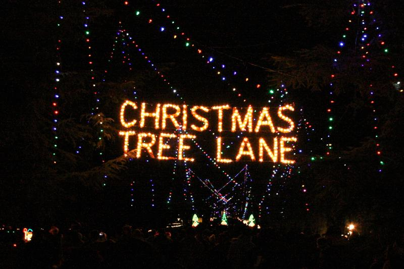 "Rather than use a master switch or automated control, Christmas Tree Lane organizers prefer to turn the lights on and off manually, assigning the complicated task to different ""lane keepers"" each night of December."