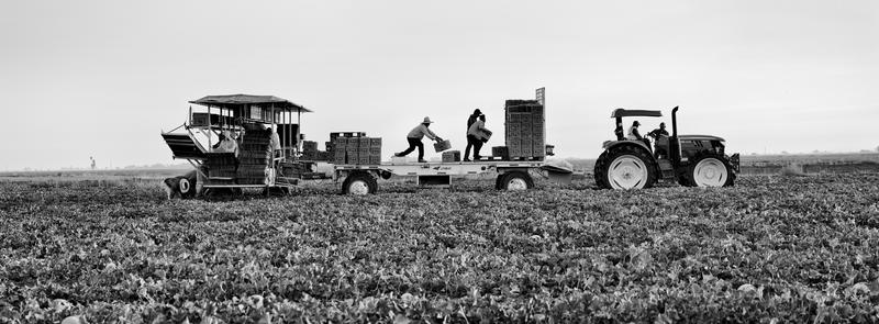 Photojournalist Matt Black photographed farmworkers in Mendota, a farm town that depends on undocumented immigrants for labor.