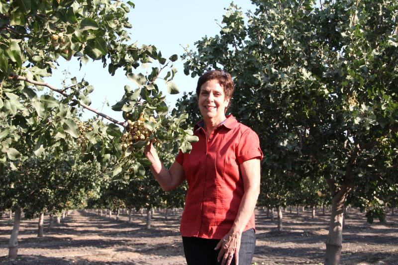 Pistachio grower Chris Romanini says she's worried that the hydrogen plant could contaminate her crops