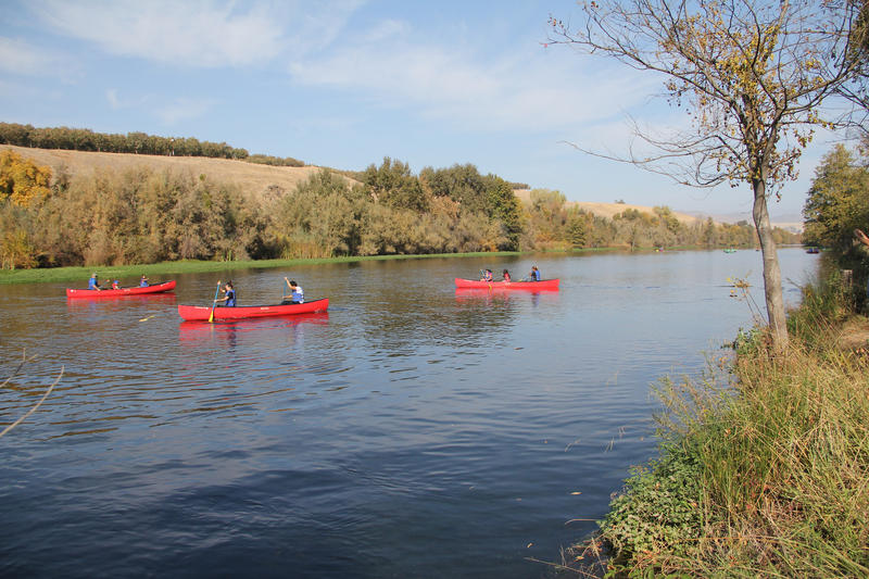 Visitors of Fresno's Lost Lake Park enjoy canoeing on the San Joaquin River