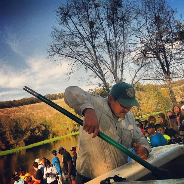 Biologists with the California Department of Fish and Wildlife transport an adult Chinook salmon from a tank to the San Joaquin River