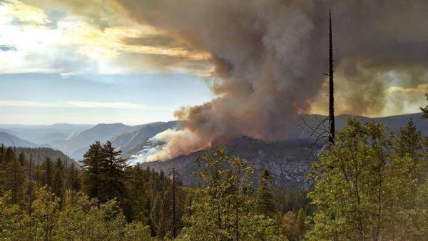 El Portal fire is burning south of the area scorched by last year's Rim Fire.