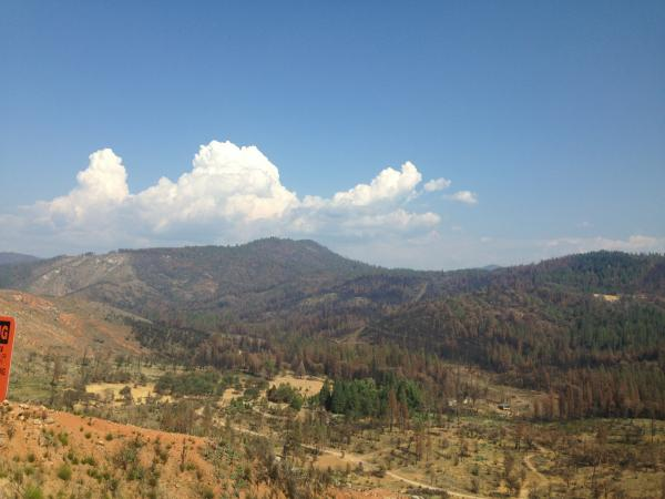 One year later the devastation of the Rim Fire can be viewed on the landscape.