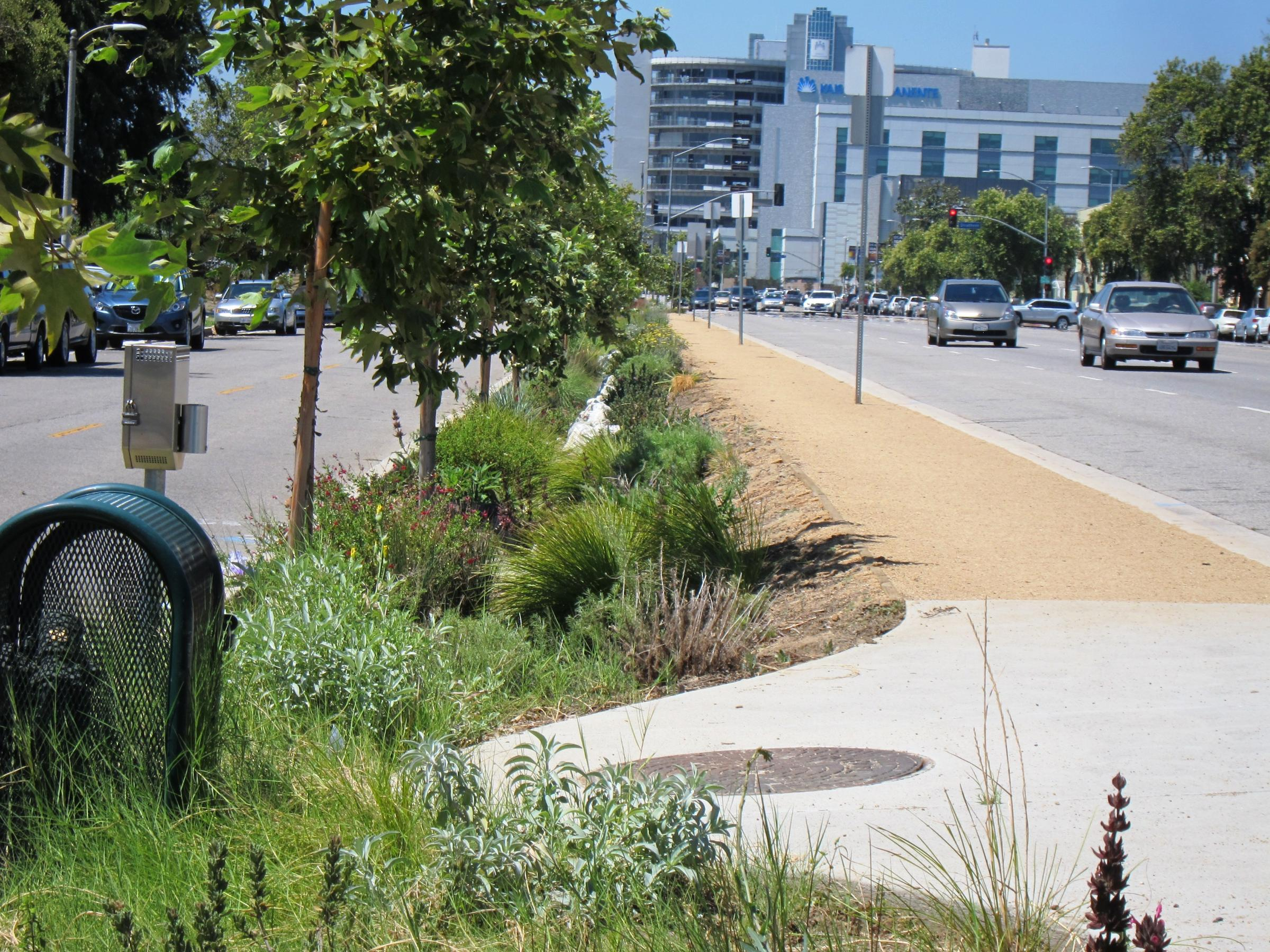 Stormwater Capture California S Untapped Water Supply