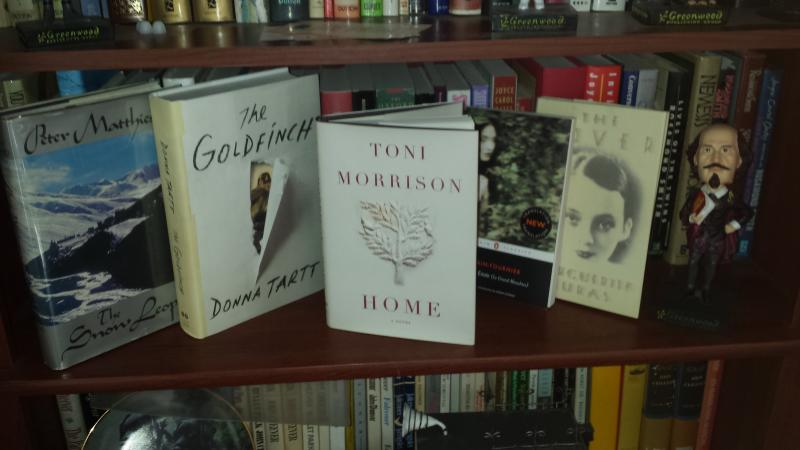 May 15, 2014 Likely Stories featured book - Home by Toni Morrison.