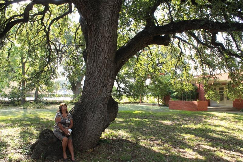 A dedication attendee takes a break under one of the historical live oaks.