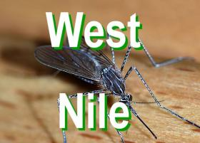 First case of West Nile Virus confirmed in Oklahoma.