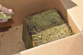Some of the pot found by the Oklahoma County Sheriff's office