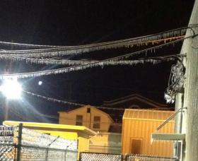 Ice coats powerlines at Hugo