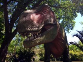 Tulsa Zoo's Zoorassic Park exhibit officially opens tomorrow. It features 11 different species of dinosaurs, including Tyrannosaurus Rex.