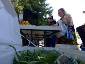 Volunteers hand out free produce Tuesday at Food on the Move's first event in Tulsa.