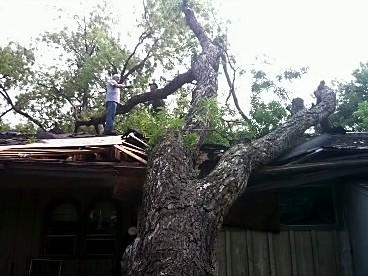 Tree into an East Tulsa home