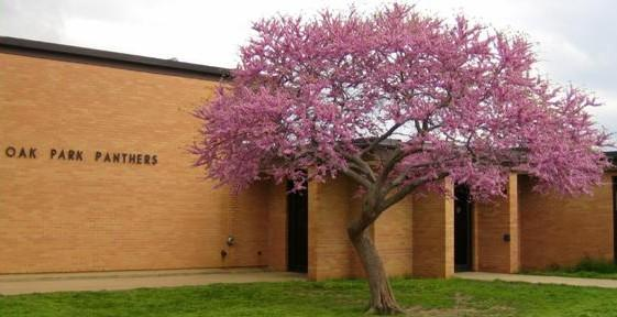 Oak Park is one of the Bartlesville Schools being sold.