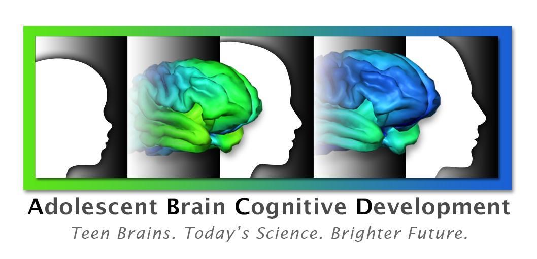 At Tulsa\'s Laureate Institute for Brain Research: The Adolescent ...