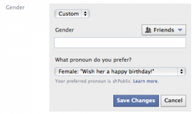 The Facebook form looks as though a person could write anything, but only one of the 56 categories can be accepted into the profile.
