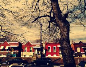 Amateur photographer Hillary Hitchcock took this photo of classic south St. Louis bungalows.
