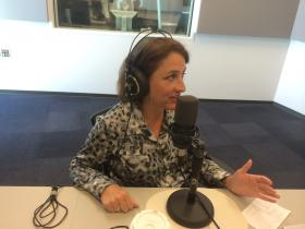 "Jane Dueker in a recent appearance on St. Louis Public Radio's ""Politically Speaking'' podcast."