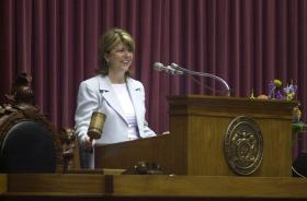 Vicki Schneider served for four terms in the Missouri House. She runs a general contracting company based in O'Fallon.