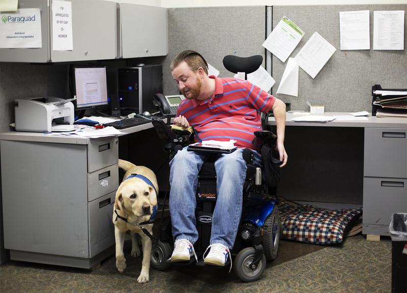 A co-worker calls Matt Brock's service dog, Lynn, out from under Matt's desk at his Paraquad cubicle.