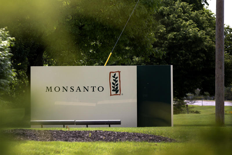Monsanto says it will not comment further on Bayer's bid, which is being reviewed by the board of directors.