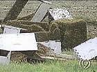 The crash caused millions of bees to be released (photo courtesy KMBC-TV, Kansas City).