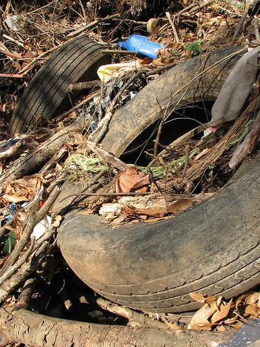 A dumped and discarded tire in Athens, GA. The Illinois EPA will help Washington Park clean up an illegal dump that contains an estimated 100 tons of trash, including tires much like this one. (Patrick Denker/ via Flickr)