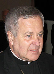 St. Louis Archbishop Robert Carlson has chaired several committees for the U.S. Conference of Catholic Bishops in past years.