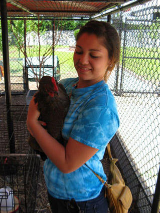 Kaila Nong is among three chicken stewards who take care of the Maplewood Richmond Heights School District's 16 chickens.