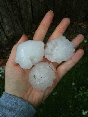 Hail from this evening's storms in the Tower Grove South neighborhood in St. Louis.