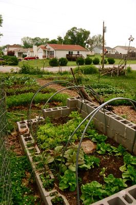 This is the third year for the Shining Rivers' edible garden. It's grown so much that now community members can purchase produce from the garden.