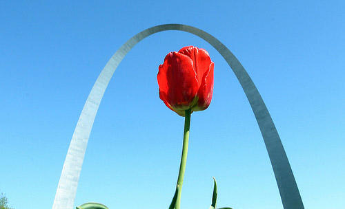 What are the particularities of the St. Louis dialect?