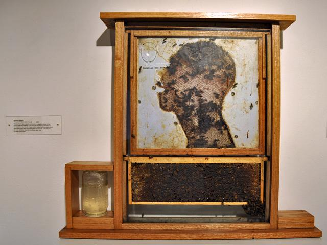 """Waxwork 2: Observation Hive #2,"" 2007. A jar with sugar water at the bottom left provides food for the bees."