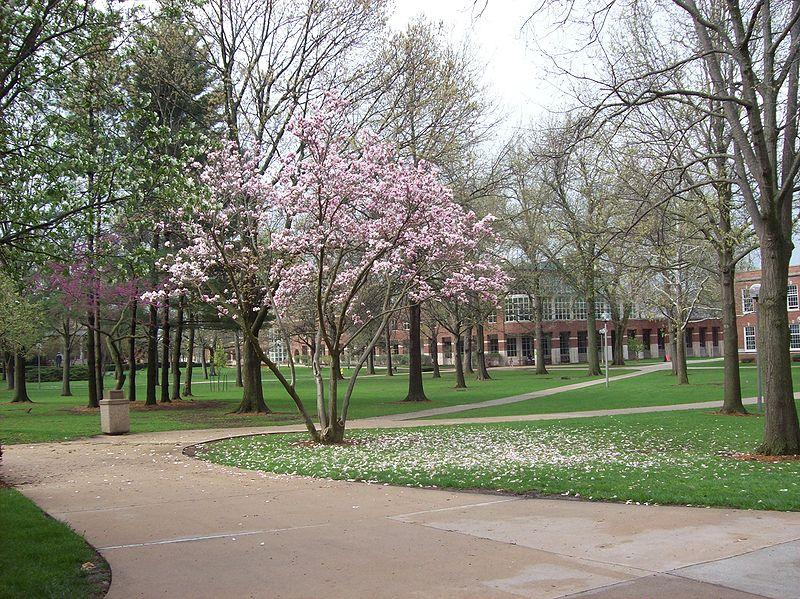 The quadrangle at Truman State University in Kirksville, Mo. Truman State is one of the universities subject to an audit released today by Mo. state auditor Tom Schweich.