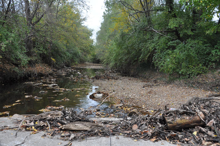 At the low water crossing in University City's Heman Park, the River Des Peres flows over the road during storms, carrying debris and raw sewage along with it.