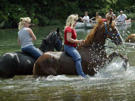 Horseback riding is a popular activity in the Ozarks, but horses' waste has been linked to high E. coli levels in the Jacks Fork, the main tributary of the Current River.