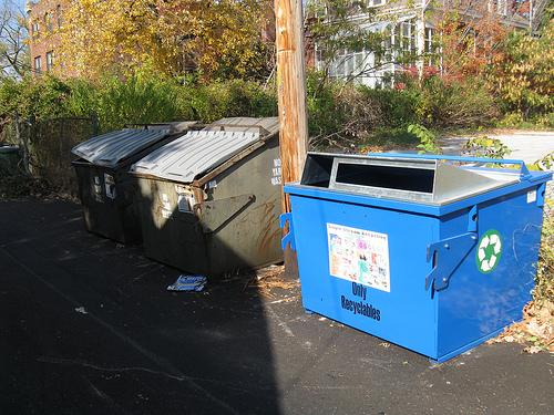 A blue recycling bin joins dumpsters for trash and yard waste in an alley near Kingshighway and McPherson in the Central West End