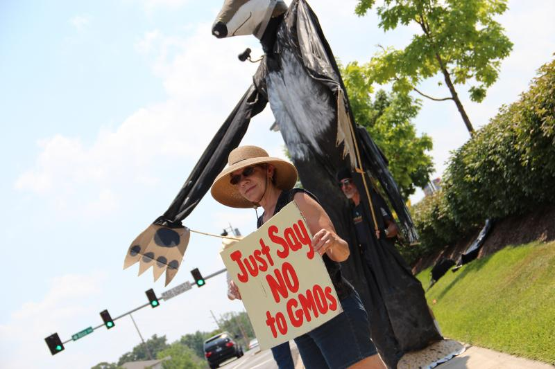 Barbara Chicherio, an organizer for the Gateway Green Alliance, holds an anti-GMO sign at a protest in front of Whole Foods Market in Brentwood, Mo. on June 9, 2012.