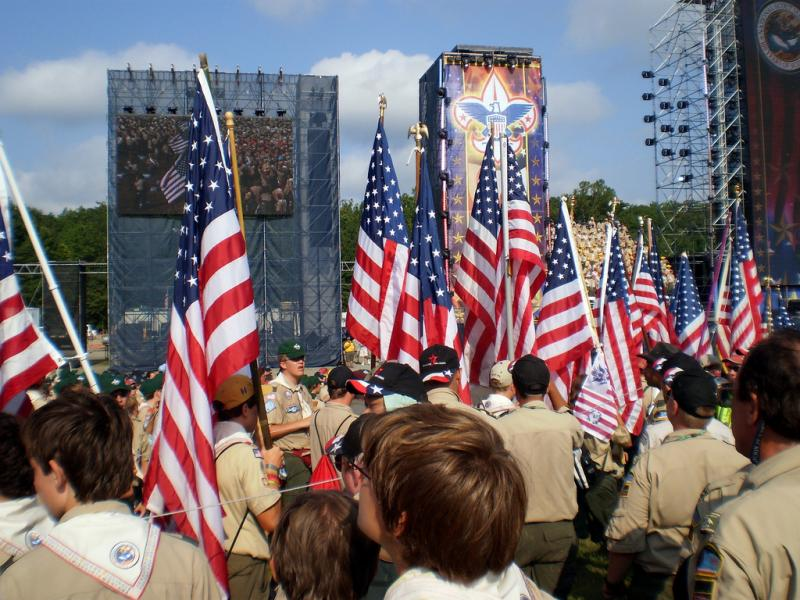 Boy Scout files indicate that there have been 46 allegations of sexual abuse in Missouri, some in the St. Louis area.
