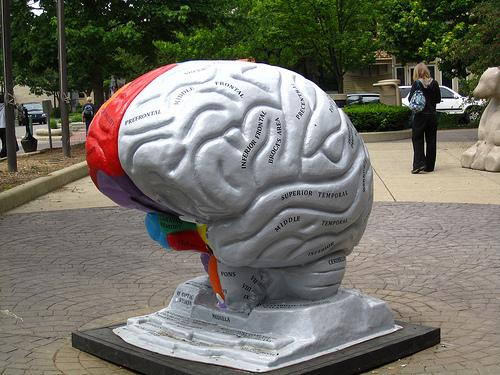 Brain sculpture in Bloomington, Ind.