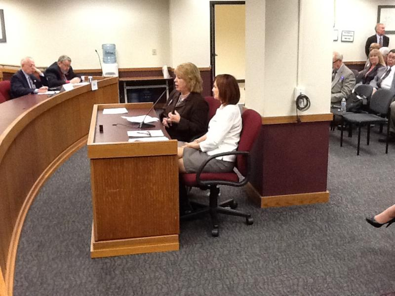 (l-r) Alice Kliethermes and Cynthia Keele of NAMI Missouri testify before a Mo. House budget subcommittee on Dec. 4th, 2012.
