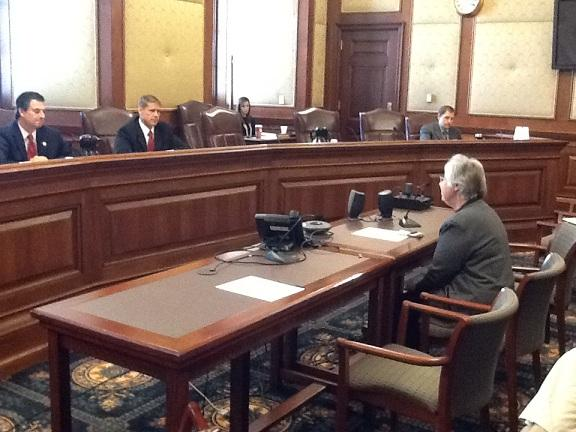Members of the Mo. Senate's Blue Ribbon Panel on Immigration hear testimony from Sister Peggy Bonnot of El Puente Hispanic Ministry in Jefferson City.