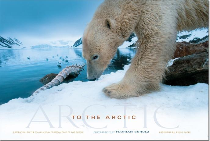 "Florian Schulz' ""To the Arctic"""