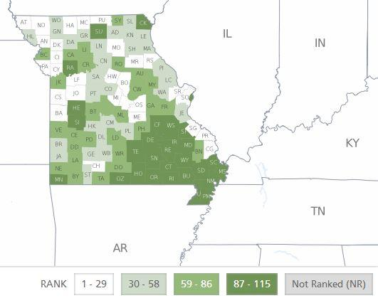A map of each county in Missouri's health ranking, based on a new study from the University of Wisconsin Population Health Institute. The study ranked state counties against each other using factors like tobacco use, access to care and more.