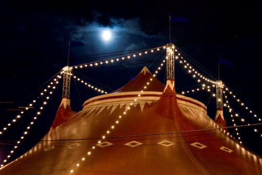 Circus Flora is celebrating its 30th anniversary this year.