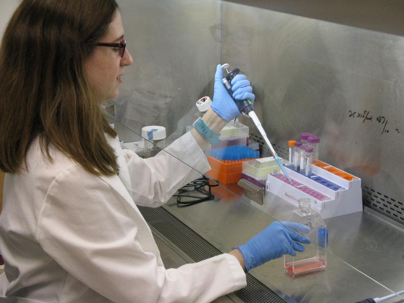 Rachel Delston works with cancer cells in the lab at Confluence Life Sciences.